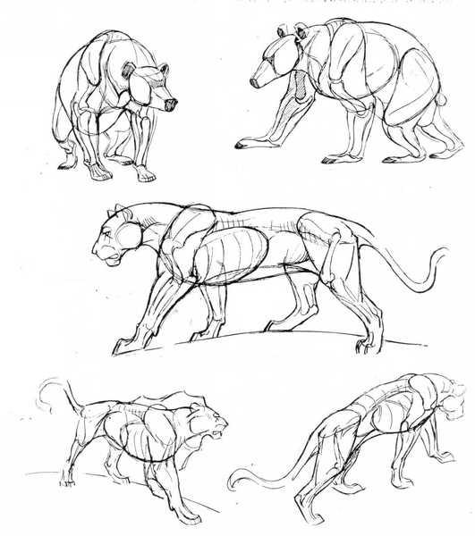 уроки рисования - Всемирная схемотехника.